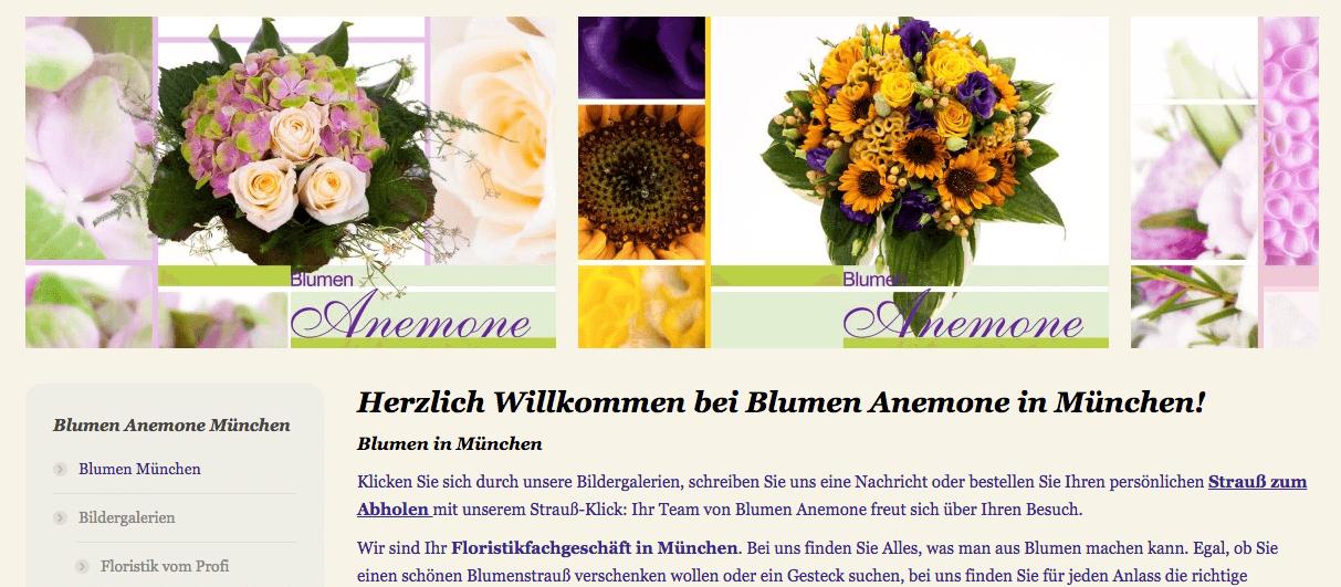 Bildergalerie Blumen