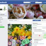Alte Gaertnerei Brueger Facebook Erfolg