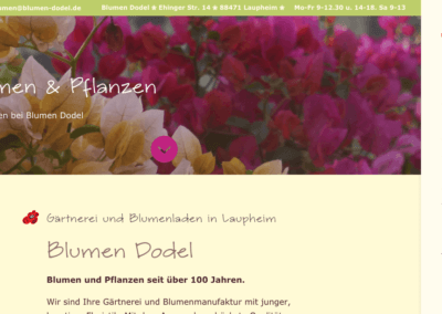 Blumen Dodel