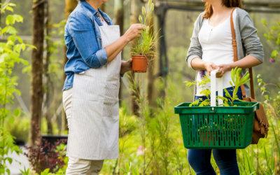 DSGVO für Floristen und Gärtner