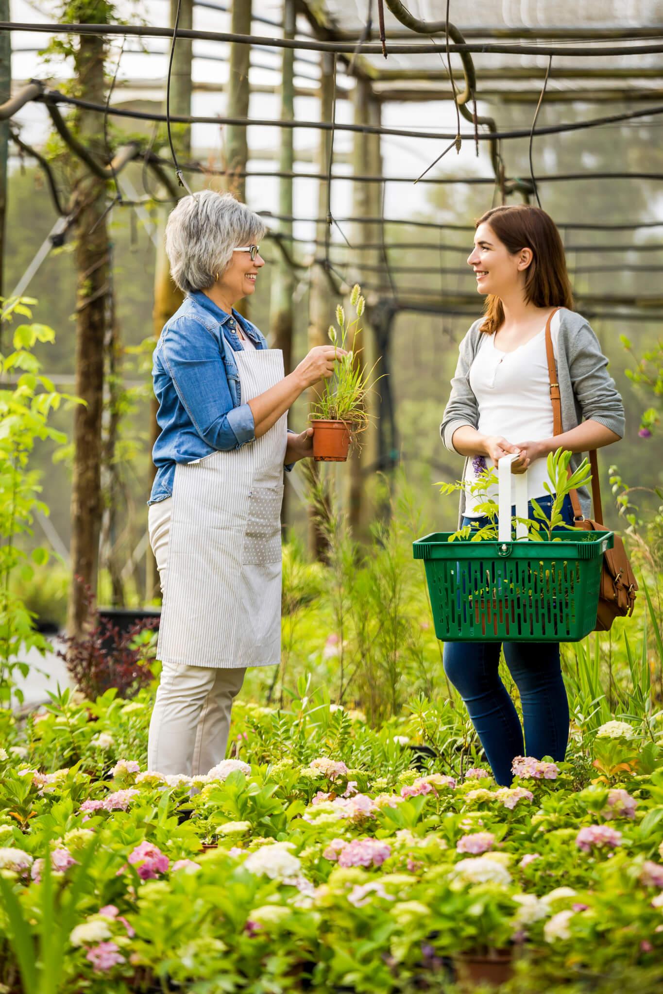 Einkaufen in der Gärtnerei