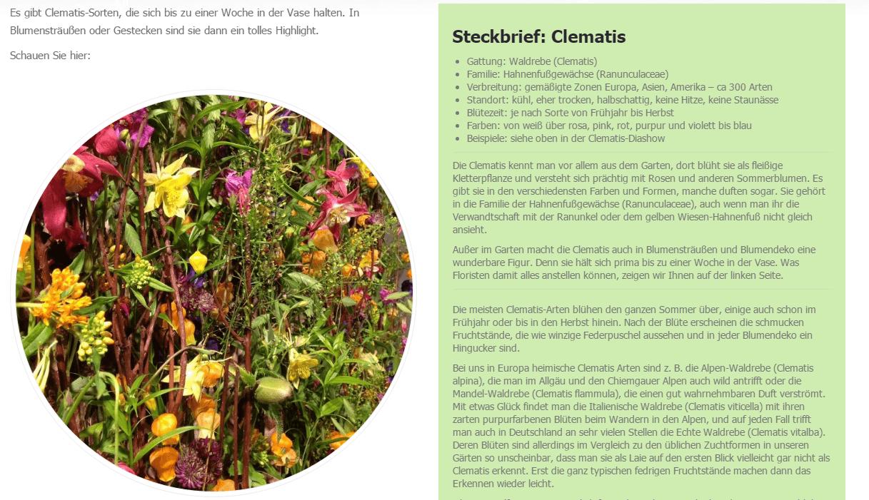 floristweb-Stream Artikel