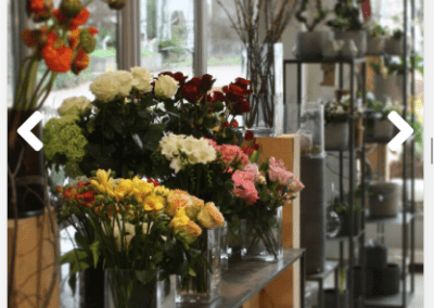 Floristweb Ambiente Donauwoerth Handy