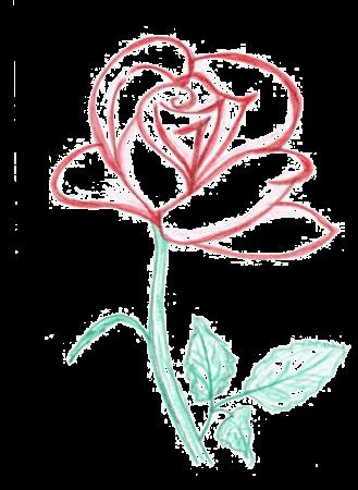 Rose: Ihr SEO-Paket 2